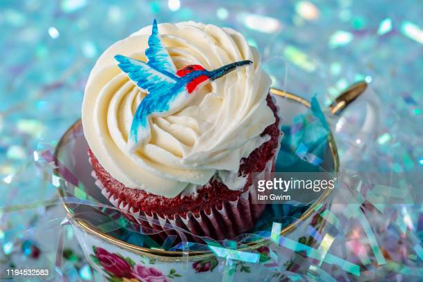 hummingbird cupcake - ian gwinn stock pictures, royalty-free photos & images