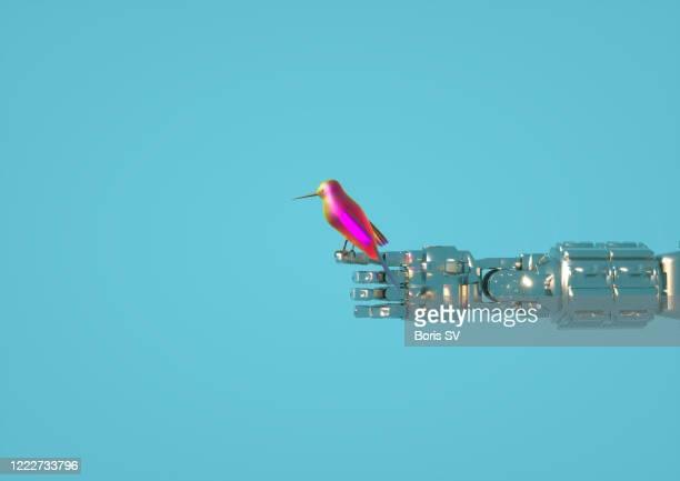 hummingbird on robots arm - parte del cuerpo humano fotografías e imágenes de stock