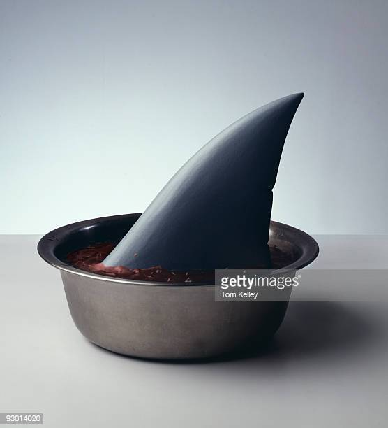 Humorous image of a shark's fin standing upright in a bowl full of reddish colored soup 1992