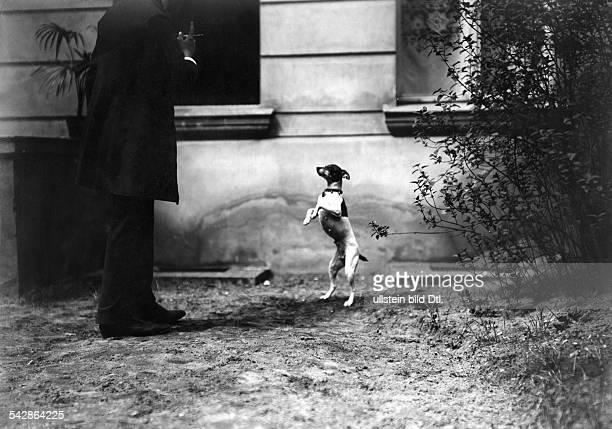 Hundeerziehung, Mann trainiert mit seinem Hund, der Hund springt- undatiert, vermutlich 1911veröffentlicht: Praktische Berlinerin 36/1911, Hausfrau...