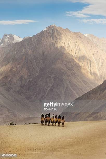 Hunder Sand dune in Nubra Valley, Ladakh, India