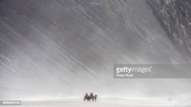 Hunder Sand Dunes of Nubra Valley in Leh Ladakh, Jammu and Kashmir, India