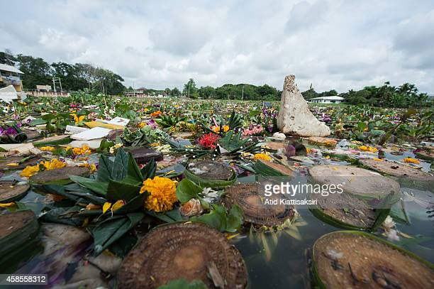 Hundred tons of krathongs float on the Ping river during Loy Krathong Festival in Chiang Mai. Every year, about 600 tons of Krathong are released...