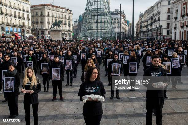 Hundreds of activists of proanimal rights group 'Igualdad Animal' hold dead animals while others hold pictures of mistreated animals during a protest...