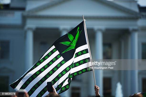 Hundreds of advocates for marijuana legalization rally and smoke pot outside the White House in Washington DC on April 02 2016