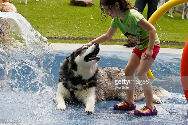 Hundreds of dogloving residents attend the Beneful Dream Dog Park unveil event at Veterans Park on July 12 2012 in Alabaster AlabamaThe newly...