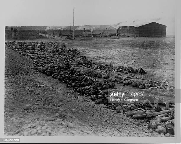 Hundreds of emaciated corpses litter the ground at a concentration camp awaiting burial in a mass grave Germany April 824 1945