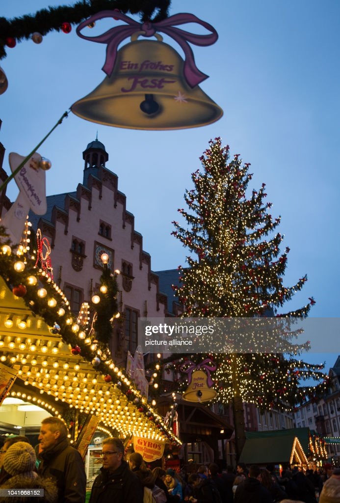 hundreds of lights light up the christmas tree at the christmas market in frankfurt main - Biggest Christmas Tree