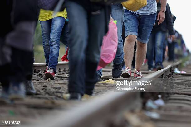 Hundreds of miigrants and refugees continue to cross the border from Serbia into Hungary along the railway tracks close to the village of Roszke on...