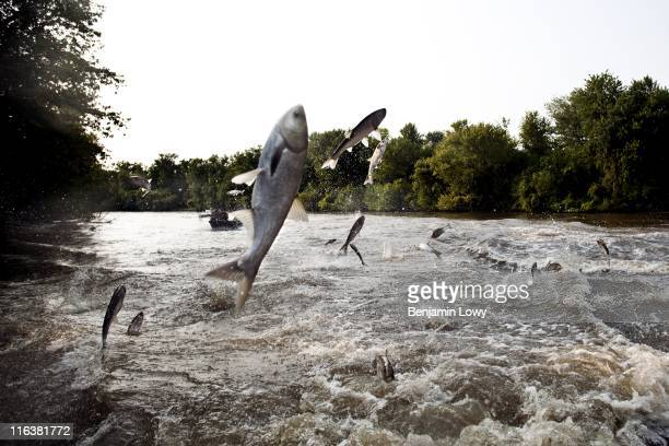 Hundreds of people descend into the Bath's riverfront and beach to take part in the Redneck fishing contest on August 6 2010 in Bath IL The contest a...