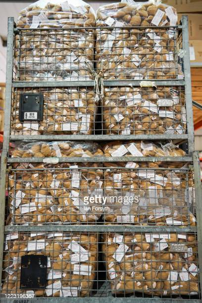 Hundreds of teddy bears are stored before being added to memory boxes at the 4Louis charity on May 06 2020 in Sunderland United Kingdom 4Louis...