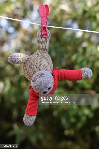 hung out to dry - funny monkeys stock pictures, royalty-free photos & images
