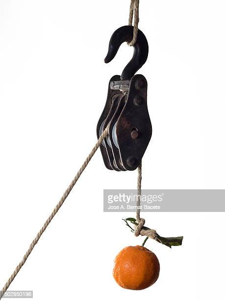 Hung tangerine of a former metallic pulley