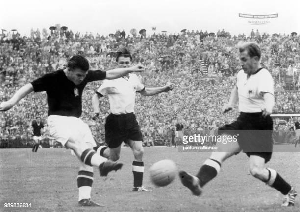 Hungarian goalgetter Ferenc Puskas kicks the ball before German player Werner Liebrich can block his shot while German forward Ottmar Walter comes...