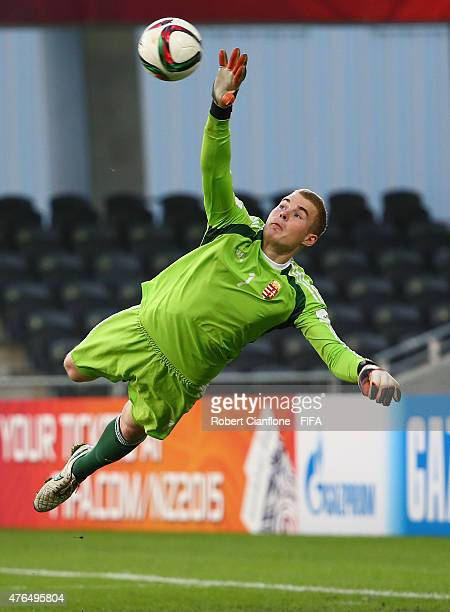 Hungarian goalkeeper Gyorgy Szekely makes a save during the FIFA U20 World Cup New Zealand 2015 Round of 16 match between Serbia and Hungary at Otago...