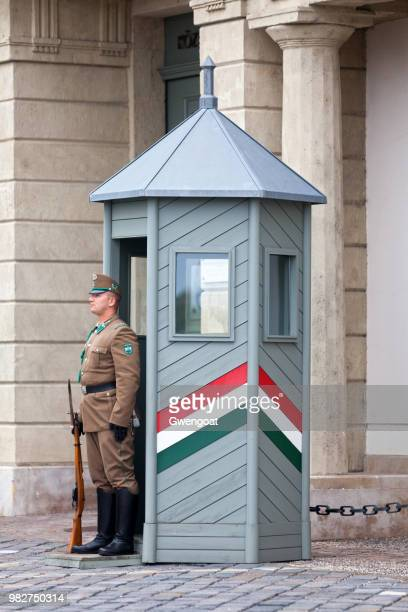 hungarian national guard - gwengoat stock pictures, royalty-free photos & images