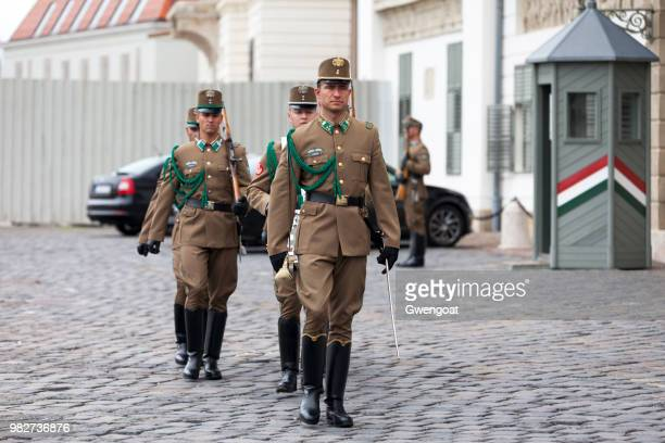 hungarian national guards parading - honor guard stock pictures, royalty-free photos & images