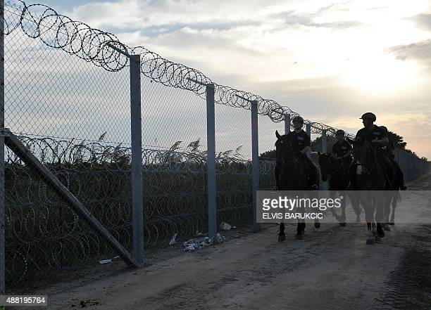 Hungarian officers of the mounted police unit patrol the newly set up fence on the border with Serbia as refugees from Middle Eastern countries...