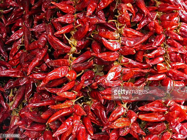 Hungarian red paprika