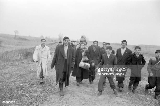 Hungarian Revolution Hungarian refugees at the border Austria Photography 1956 [Ungarische Revolution Ungarische Fluechtlinge an der Grenze...
