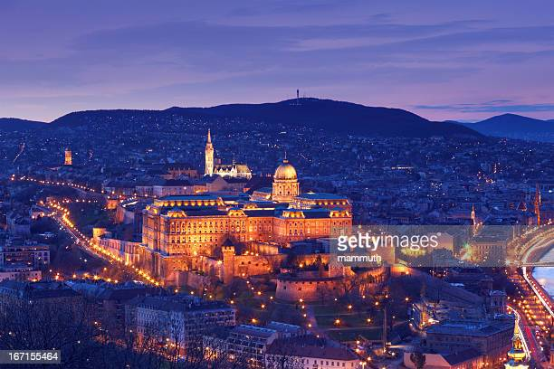 hungarian royal palace - royal palace budapest stock pictures, royalty-free photos & images