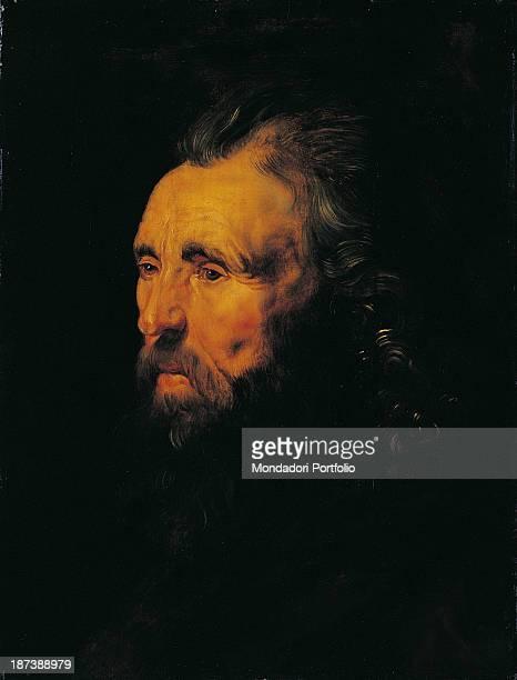 Hungary Budapest Szépmuvészeti Múzeum All Study of a Male Head Old and wrinkled man wearing a beard and a moustache