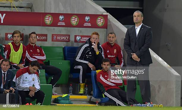 Hungary manager Bernd Storck during the Euro 2016 Group F qualifying match between Northern Ireland and Hungary at Windsor Park on September 7 2015...