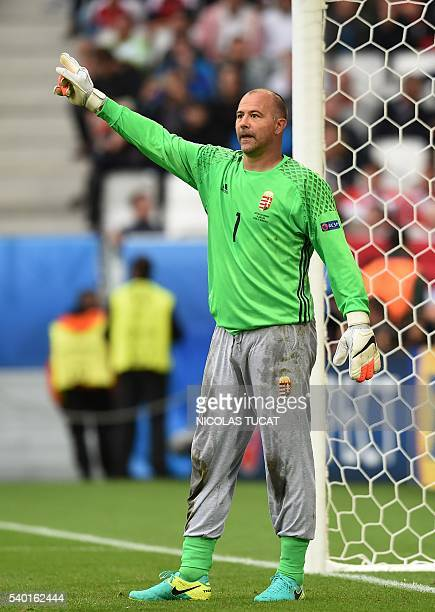 Hungary's goalkeeper Gabor Kiraly gestures during the Euro 2016 group F football match between Hungary and Austria at the Matmut Atlantique stadium...