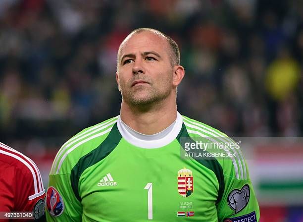 Hungary's goalkeeper Gabor Kiraly is pictured prior to the Euro 2016 playoff football match between Hungary and Norway at the Grupama Arena in...