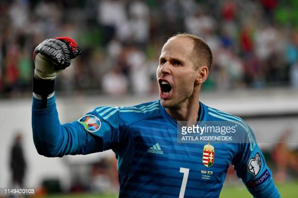 Hungary's goalkeeper Peter Gulacsi celebrates his team's victory over Wales after the UEFA Euro 2020 qualifier Group E football match Hungary against...
