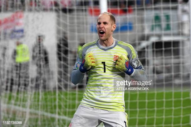 Hungary's goalkeeper Peter Gulacsi celebrates their victory over Croatia during the UEFA Euro 2020 football 1st round Groupe E qualification match...