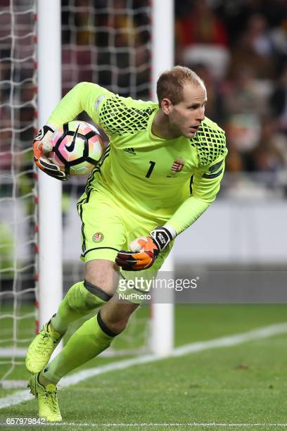 Hungary's goalkeeper Peter Gulacsi in action during the FIFA World Cup Russia 2018 qualifier match Portugal vs Hungary at the Luz stadium in Lisbon...