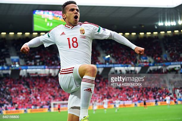 Hungary's midfielder Zoltan Stieber celebrates after scoring a goal during the Euro 2016 group F football match between Hungary and Austria at the...