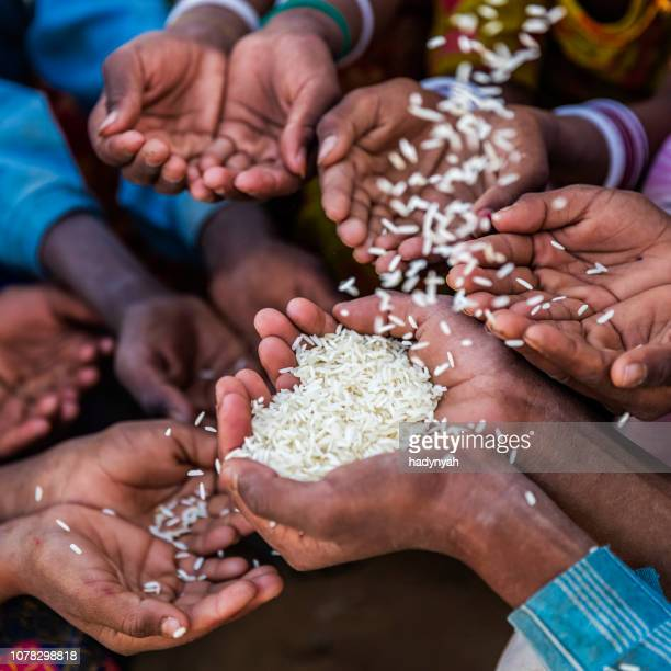 hunger in africa - hands asking for food - famine stock pictures, royalty-free photos & images