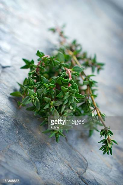 A hunk of thyme on a marble surface