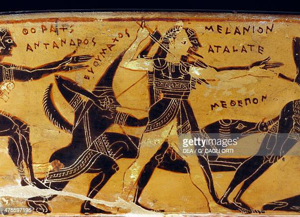 Hunt of Meleager and Peleus Calydonian boar hunters and Scythian archer detail from the Francois vase Attic volute crater 570 BC560 BC by the potter...