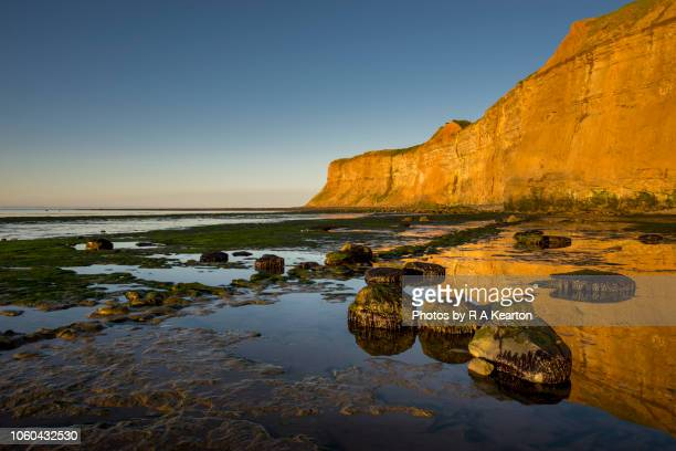 huntcliff in evening sunlight, saltburn-by-the-sea, north yorkshire, england - saltburn stock photos and pictures
