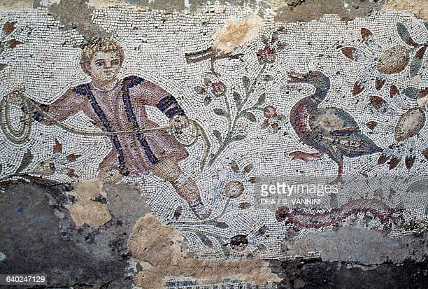 Hunter and a bird detail of a mosaic from the House of the Aviary park of Roman villas Archaeological Site of Carthage Tunisia Roman civilisation 3rd...
