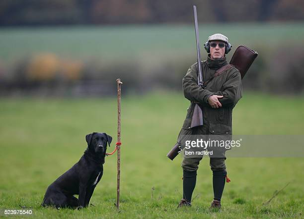 Hunter holding a shot gun waits with his Black Labrador gun dog during a pheasant shoot near Sherbourne, Warwickshire, England, UK. The pheasant...