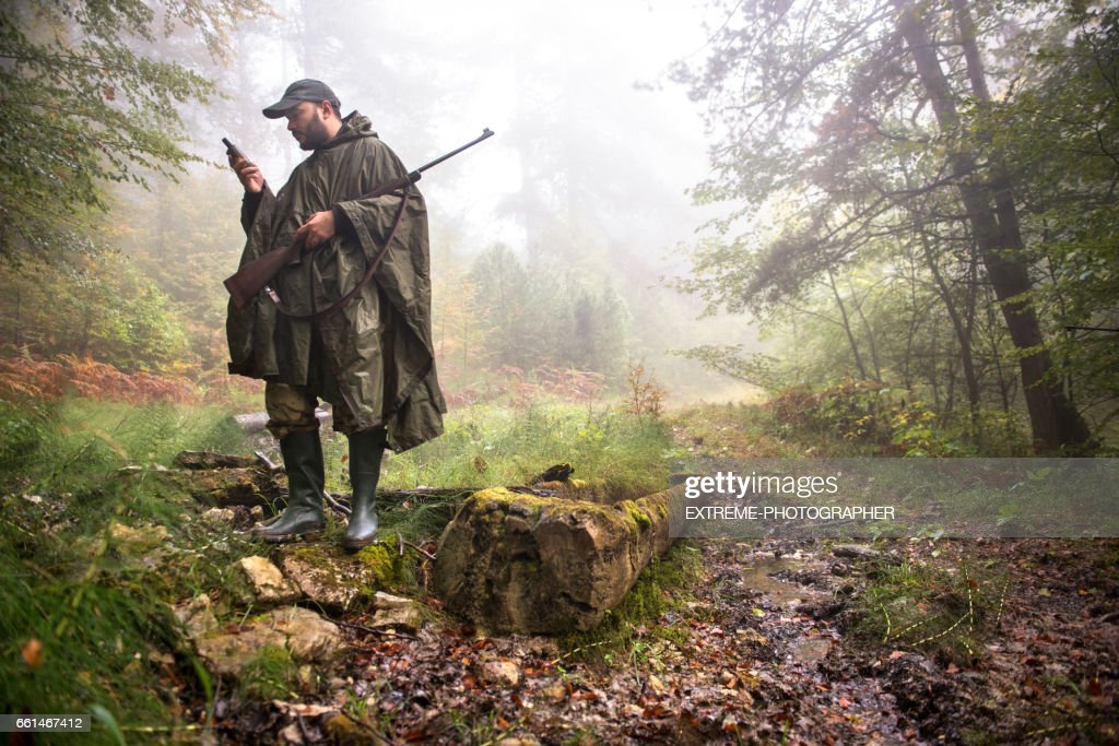 Hunter in the woods : Stock Photo