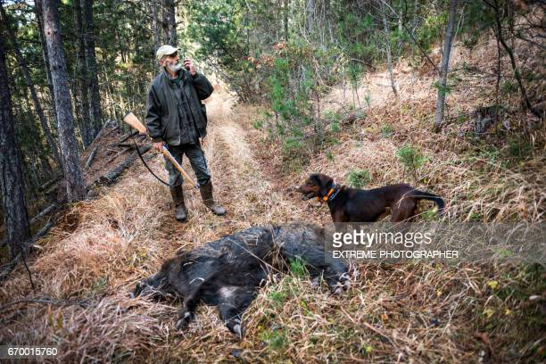 hunter in the woods - dead dog stock pictures, royalty-free photos & images