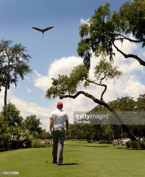 Hunter Mahan watches a bird approaching the sixth hole during the first round of THE PLAYERS Championship on THE PLAYERS Stadium Course at TPC...