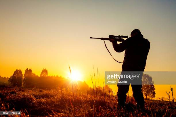 hunter on the morning hunt - hunting sport stock pictures, royalty-free photos & images