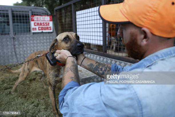 Hunter pets his dog prior to the start of a boar hunt in Cognocoli-Monticchu, on the French Mediterranean island of Corsica on August 21, 2021.