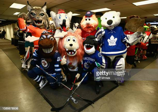 Hunter the Lynx of the Edmonton Oilers Mick E Moose of the Winnipeg Jets Harvey the Hound of the Calgary Flames Spartacat of the Ottawa Senators...