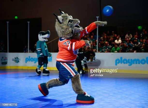 Hunter the Lynx of the Edmonton Oilers participates in the 2019 NHL AllStar Mascot Showdown on January 24 2019 in San Jose California