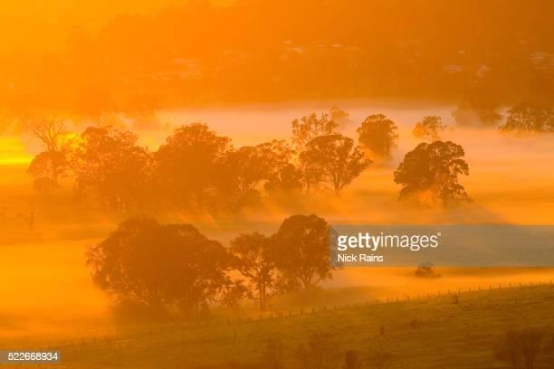 Hunter Valley at dusk, Cessnock, Australia