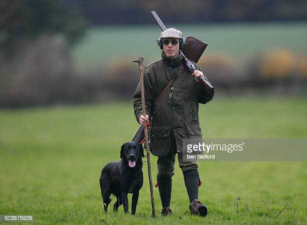 Hunter walking with his Black Labrador gun dog walking during a pheasant shoot near Sherbourne, Warwickshire, England, UK. The pheasant shooting...