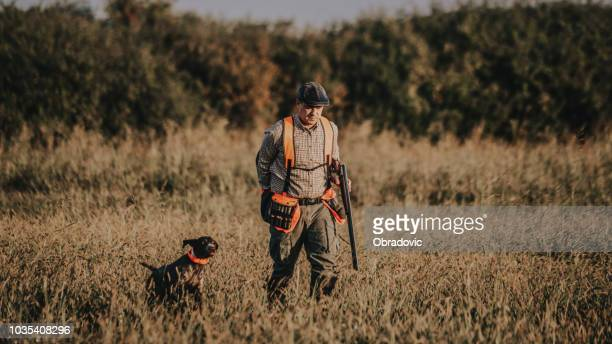 hunter with hunting dog during a hunt - quail bird stock photos and pictures