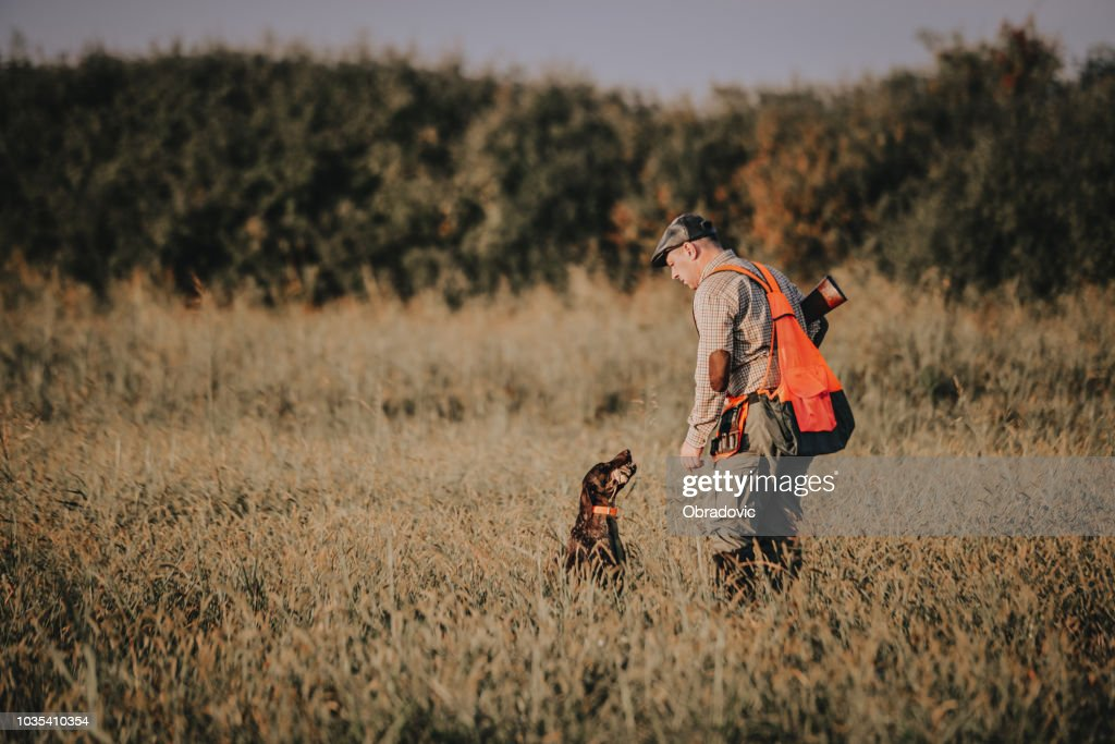 Hunter with hunting dog during a hunt : Stock Photo